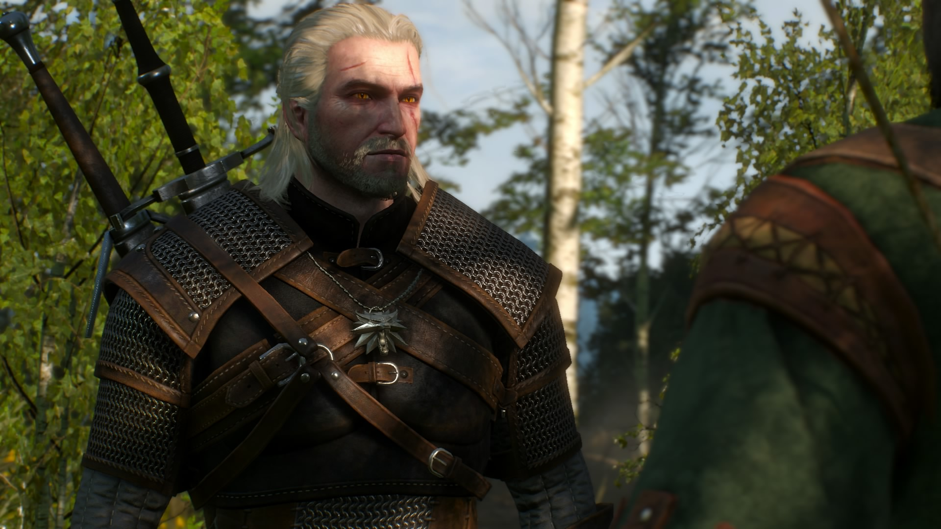 The Witcher III 2